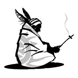 logo nativi.org